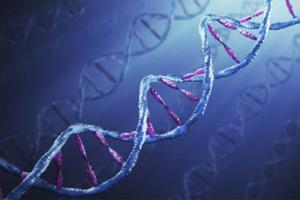 gene laboratorio