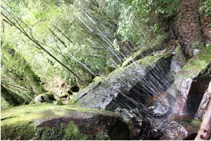 gruta-do-monge-250913-bandab