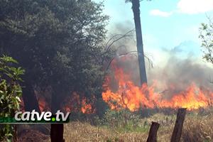 incendio-15092013-bandab