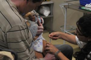 vacina-catapora-030913-bandab