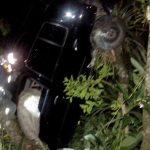 Motorista 'nasce de novo' após sair ileso de acidente que deixou carro pendurado em árvore; foto