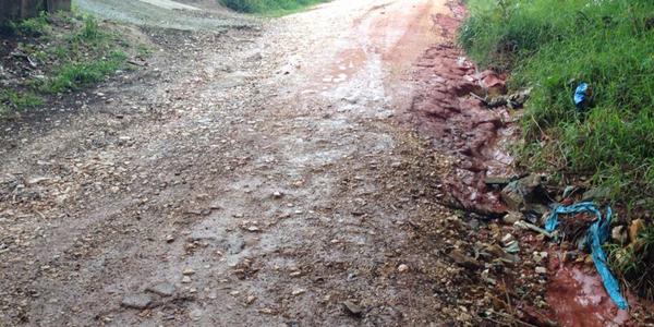 asfaltodentro2