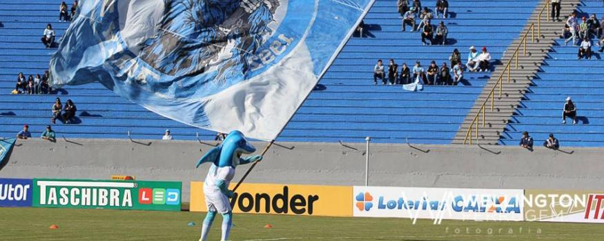 Tubarão voltou a vencer. (Divulgação/ Londrina)