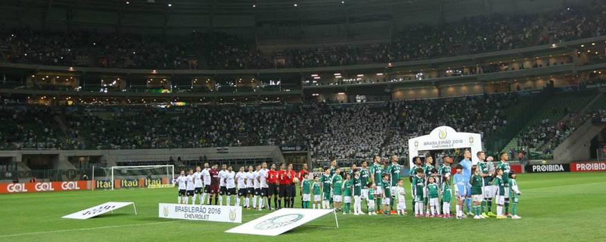 Estádio do Palmeiras pode ter grama sintética. (Facebook/ Palmeiras)