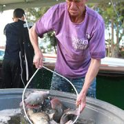 Cidades da RMC se preparam para tradicionais Feiras do Peixe Vivo; saiba como participar